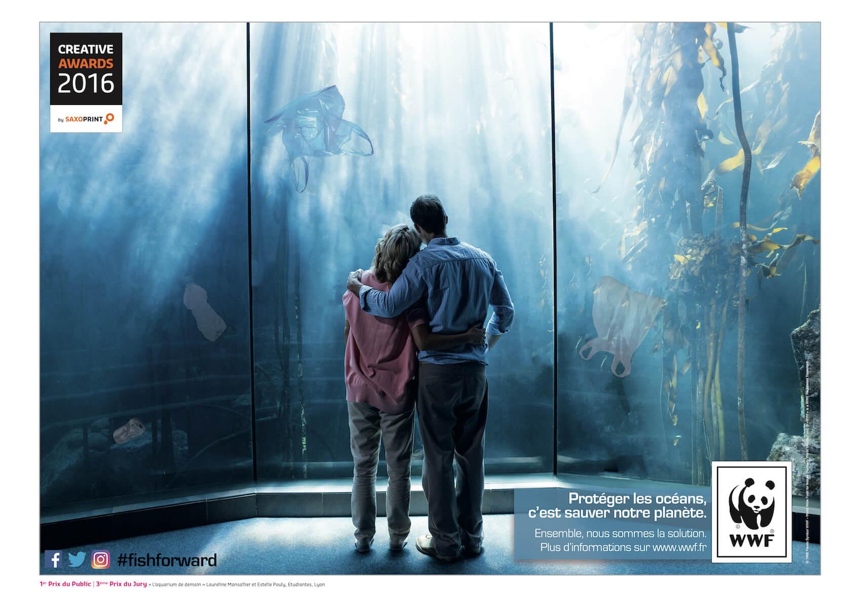 concours-aquarium